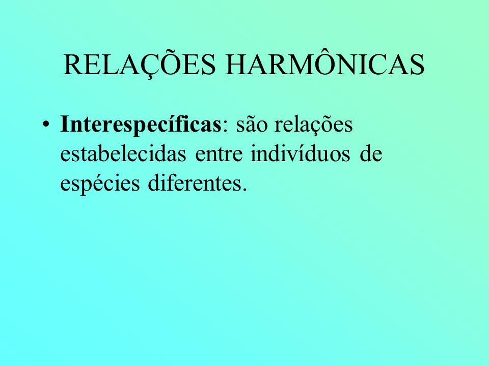 RELAÇÕES HARMÔNICAS Interespecíficas: são relações estabelecidas entre indivíduos de espécies diferentes.