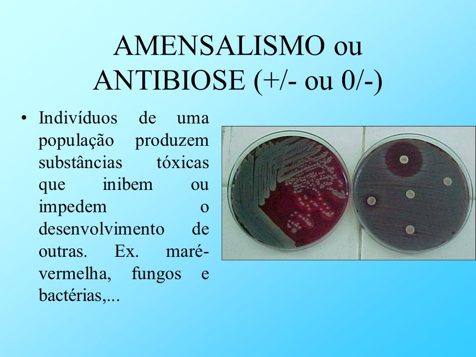 AMENSALISMO ou ANTIBIOSE (+/- ou 0/-)