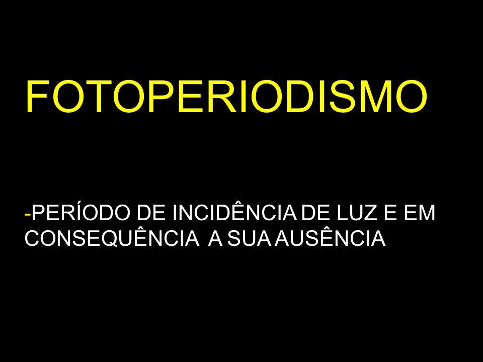 FOTOPERIODISMO -PERÍODO DE INCIDÊNCIA DE LUZ E EM CONSEQUÊNCIA A SUA AUSÊNCIA