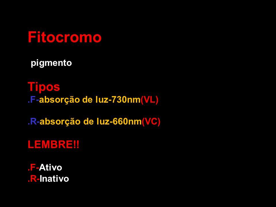 Fitocromo Tipos: LEMBRE!! -pigmento .F-absorção de luz-730nm(VL)