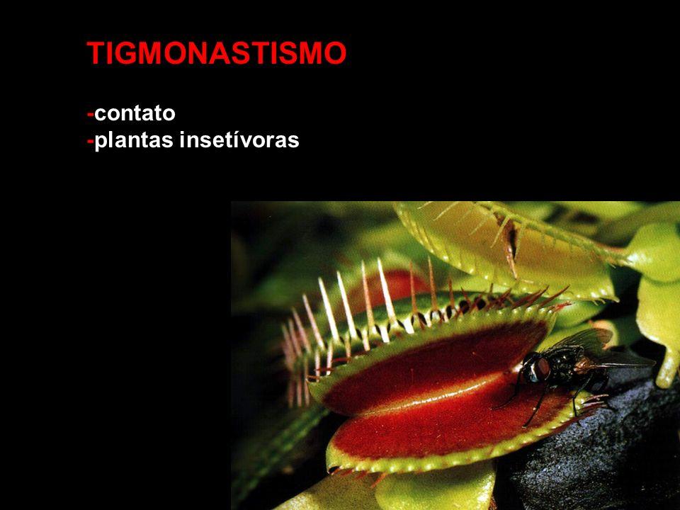 TIGMONASTISMO -contato -plantas insetívoras