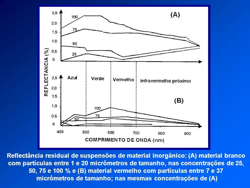 micrômetros de tamanho; nas mesmas concentrações de (A)