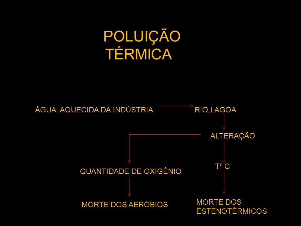 POLUIÇÃO TÉRMICA ÁGUA AQUECIDA DA INDÚSTRIA RIO,LAGOA ALTERAÇÃO T