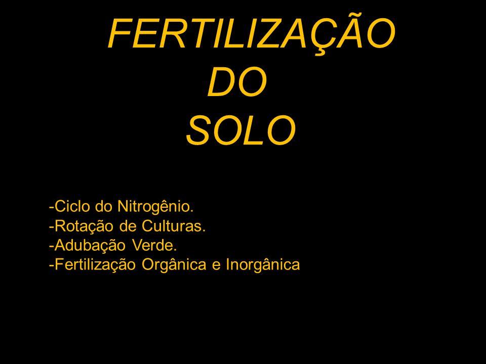 DO SOLO -Ciclo do Nitrogênio. -Rotação de Culturas. -Adubação Verde.