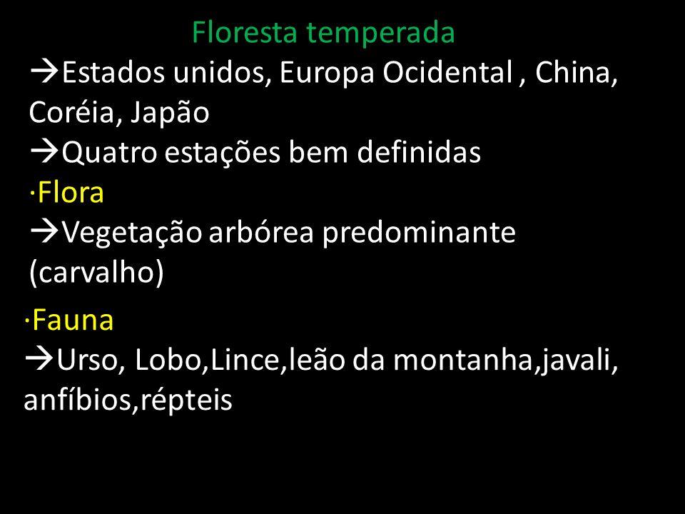 Floresta temperada Estados unidos, Europa Ocidental , China, Coréia, Japão. Quatro estações bem definidas.