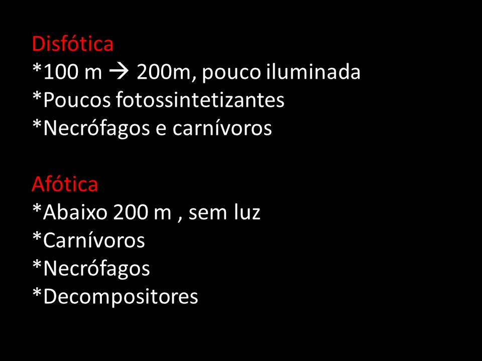 Disfótica *100 m  200m, pouco iluminada. *Poucos fotossintetizantes. *Necrófagos e carnívoros. Afótica.