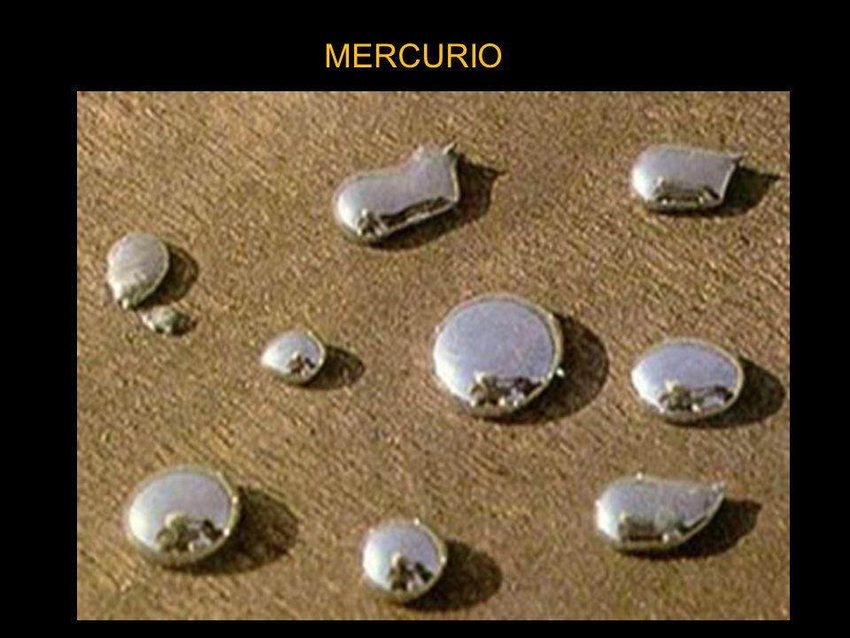 mMERCURIO