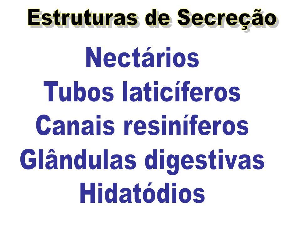 Estruturas de Secreção