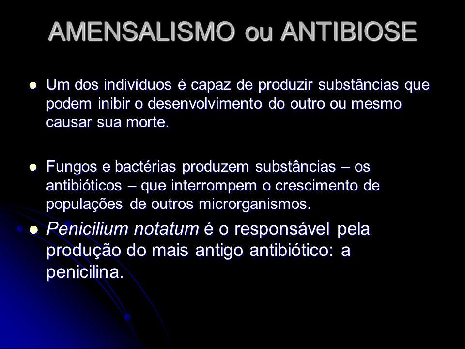 AMENSALISMO ou ANTIBIOSE
