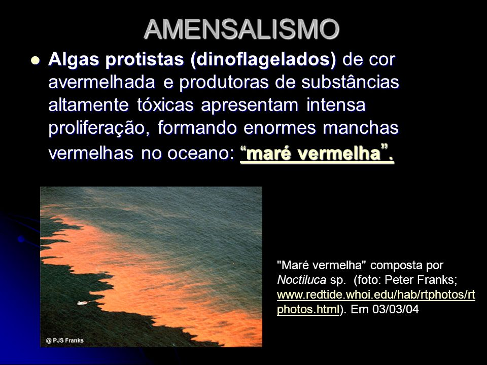 AMENSALISMO