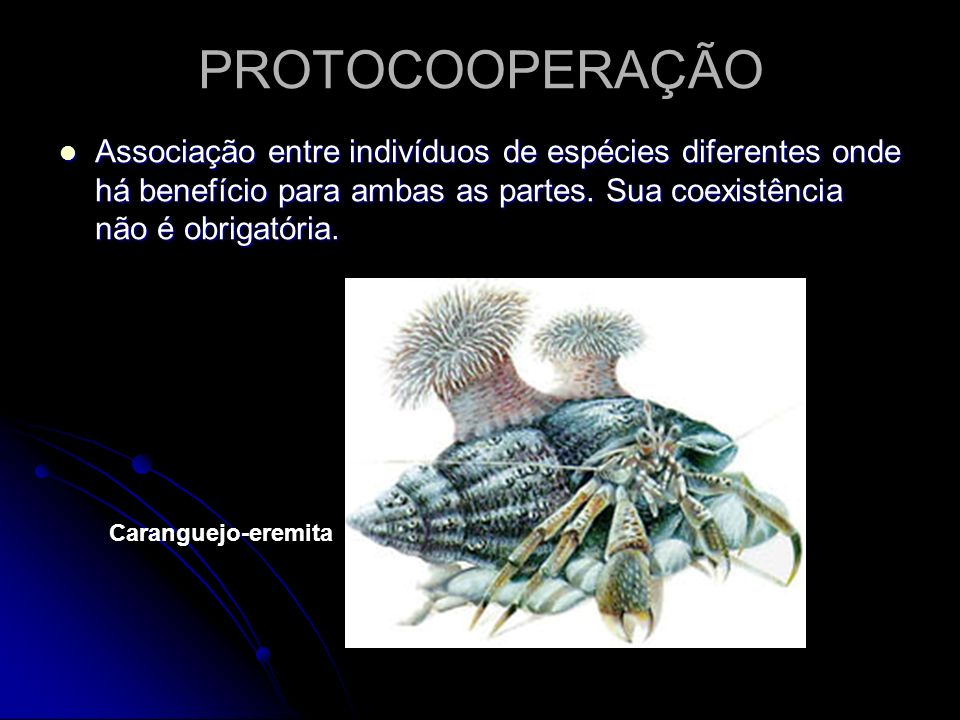 PROTOCOOPERAÇÃO Associação entre indivíduos de espécies diferentes onde há benefício para ambas as partes. Sua coexistência não é obrigatória.