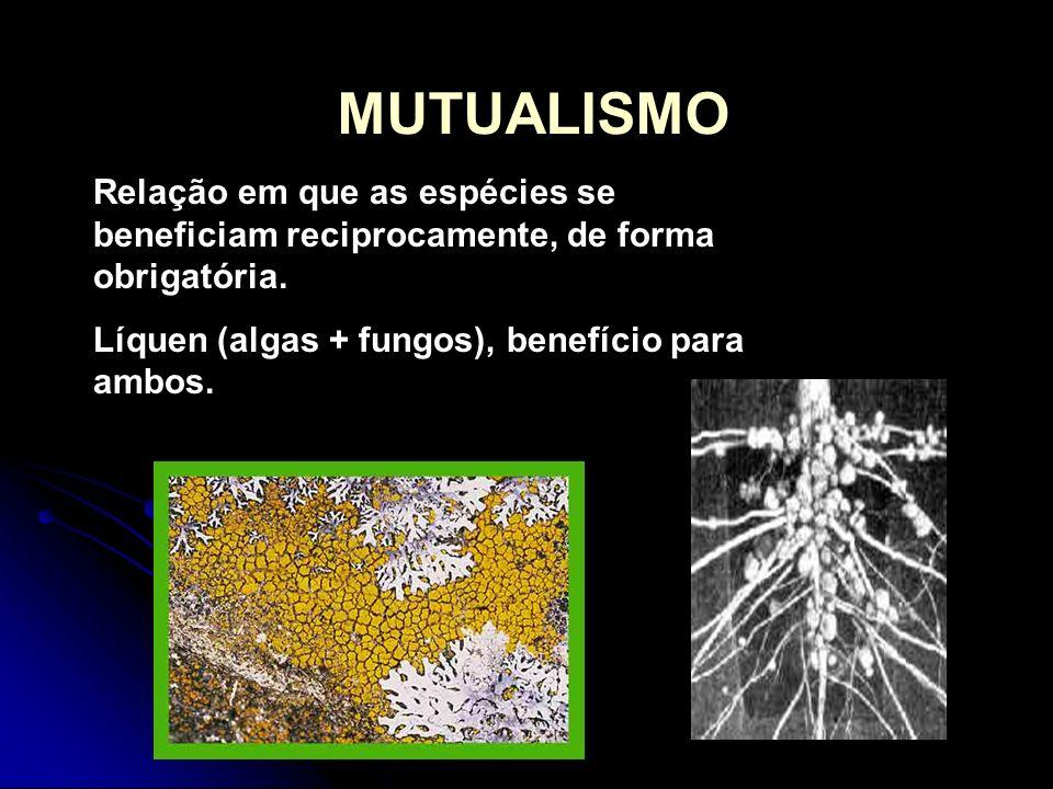 MUTUALISMO Relação em que as espécies se beneficiam reciprocamente, de forma obrigatória.