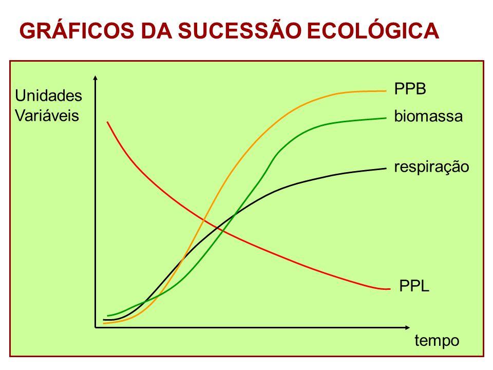 GRÁFICOS DA SUCESSÃO ECOLÓGICA