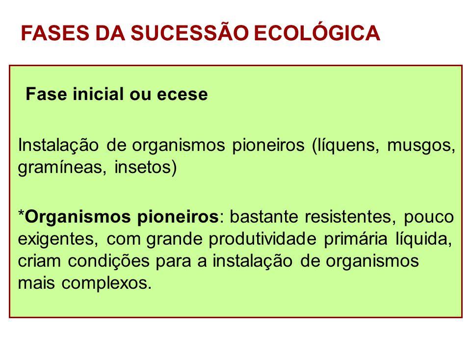 FASES DA SUCESSÃO ECOLÓGICA