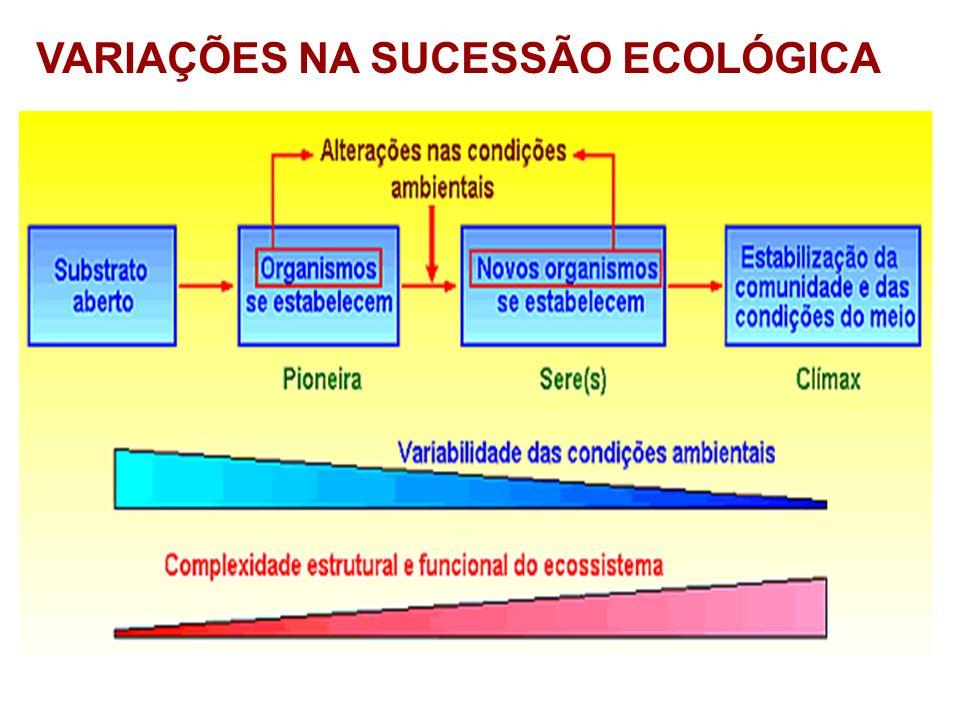 VARIAÇÕES NA SUCESSÃO ECOLÓGICA