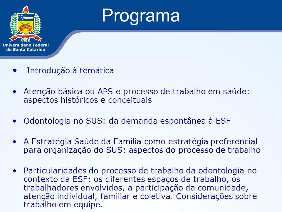 Programa Introdução à temática