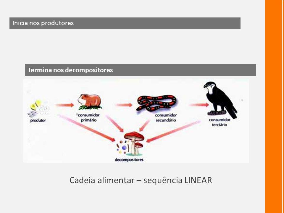 Cadeia alimentar – sequência LINEAR