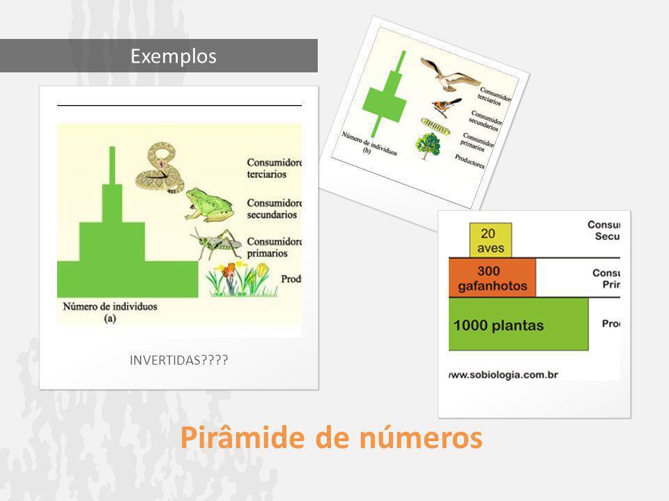 Exemplos INVERTIDAS Pirâmide de números