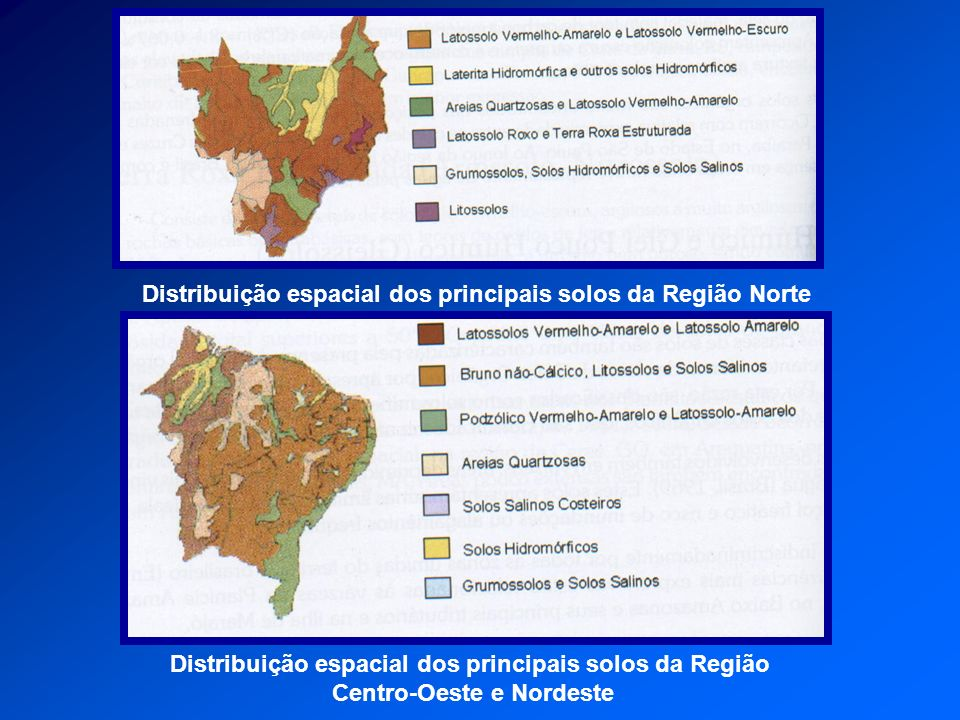 Distribuição espacial dos principais solos da Região Norte