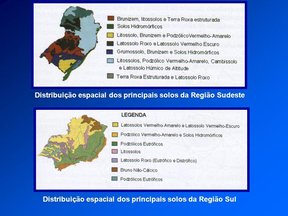 Distribuição espacial dos principais solos da Região Sul