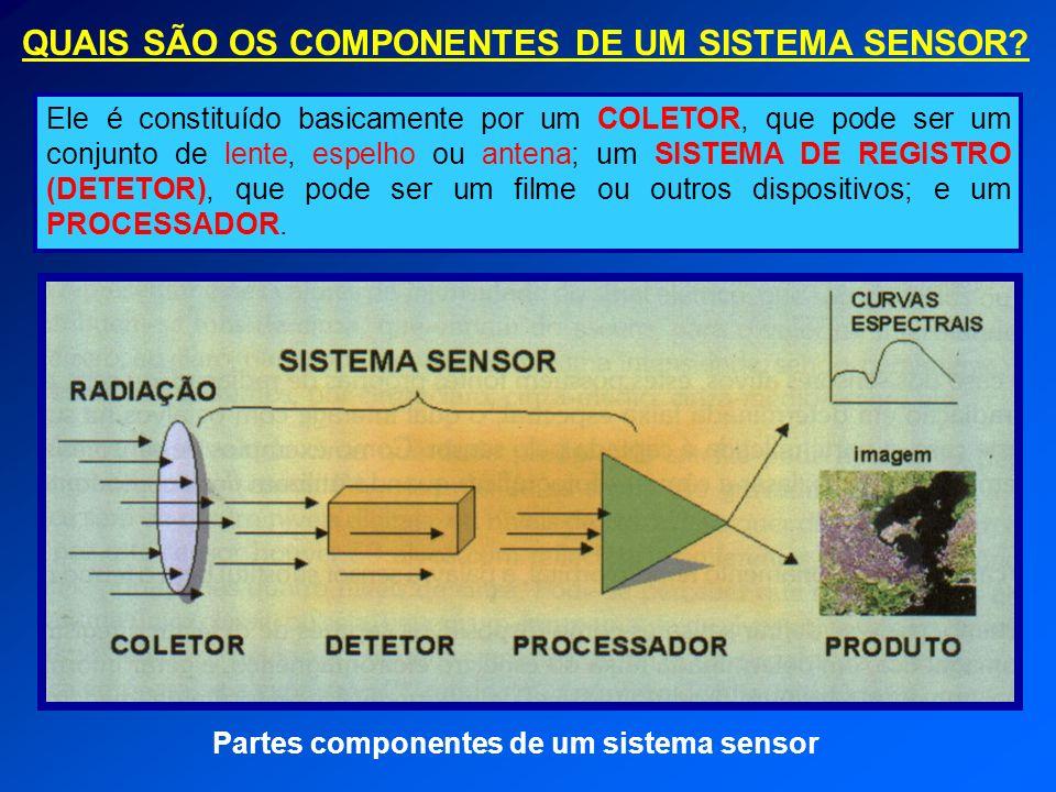 QUAIS SÃO OS COMPONENTES DE UM SISTEMA SENSOR
