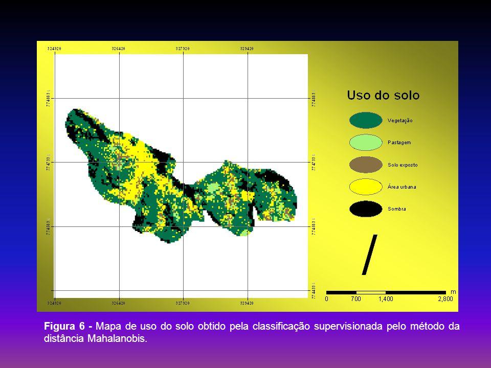 Figura 6 - Mapa de uso do solo obtido pela classificação supervisionada pelo método da distância Mahalanobis.