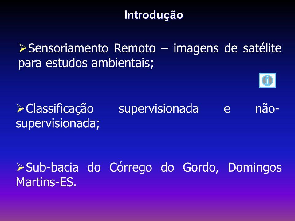 Sensoriamento Remoto – imagens de satélite para estudos ambientais;