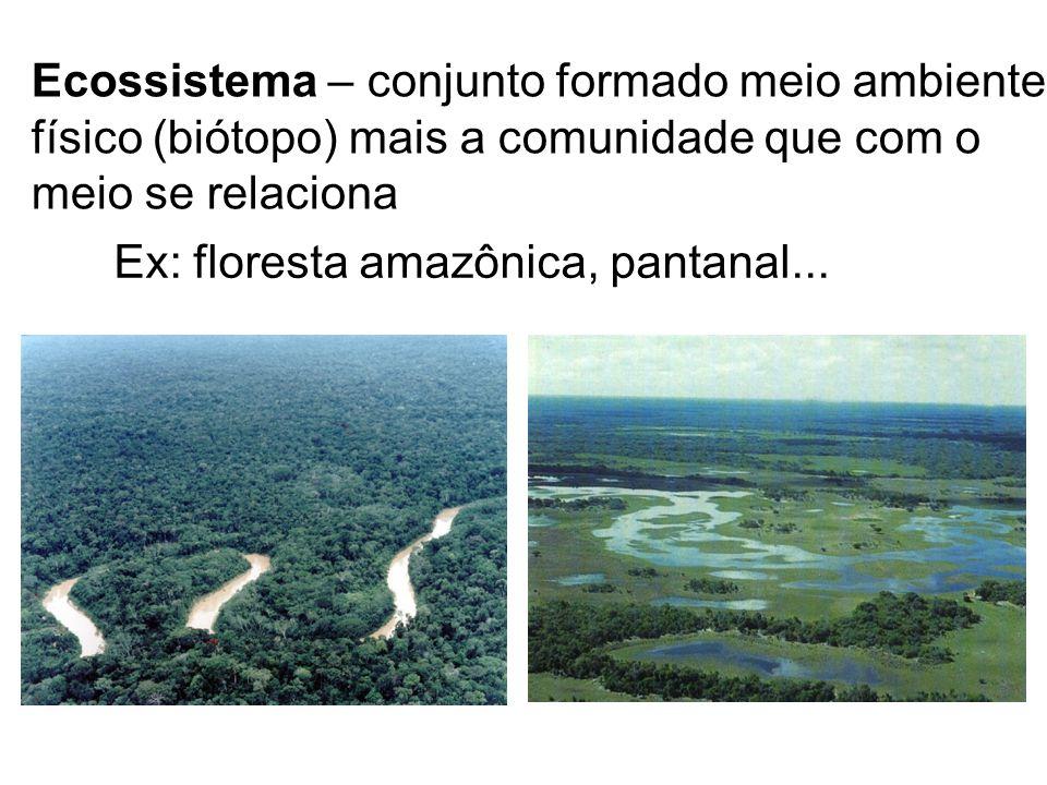 Ecossistema – conjunto formado meio ambiente