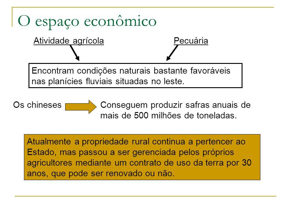 O espaço econômico Atividade agrícola Pecuária