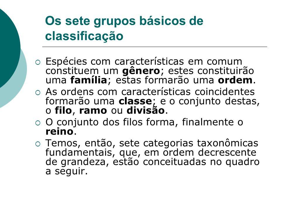 Os sete grupos básicos de classificação
