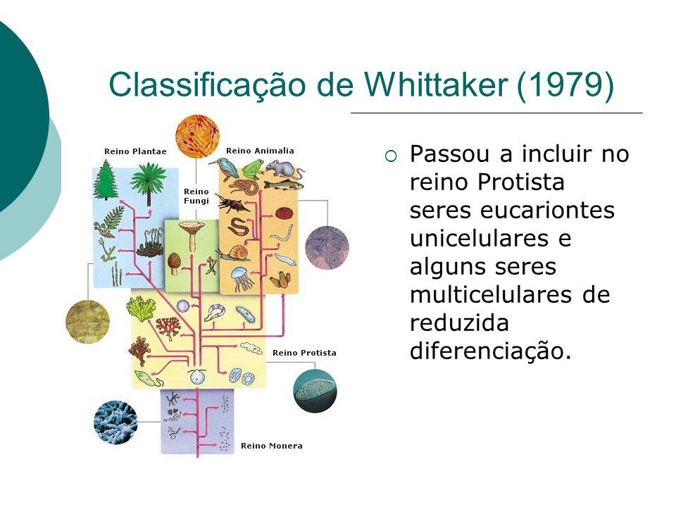 Classificação de Whittaker (1979)