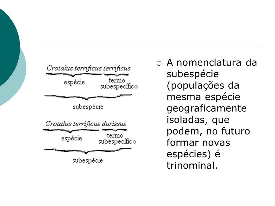 A nomenclatura da subespécie (populações da mesma espécie geograficamente isoladas, que podem, no futuro formar novas espécies) é trinominal.