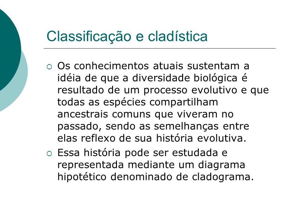 Classificação e cladística