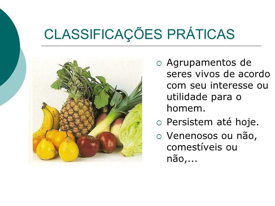 CLASSIFICAÇÕES PRÁTICAS