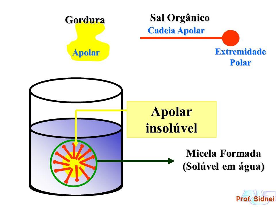Apolar insolúvel Sal Orgânico Gordura Micela Formada (Solúvel em água)