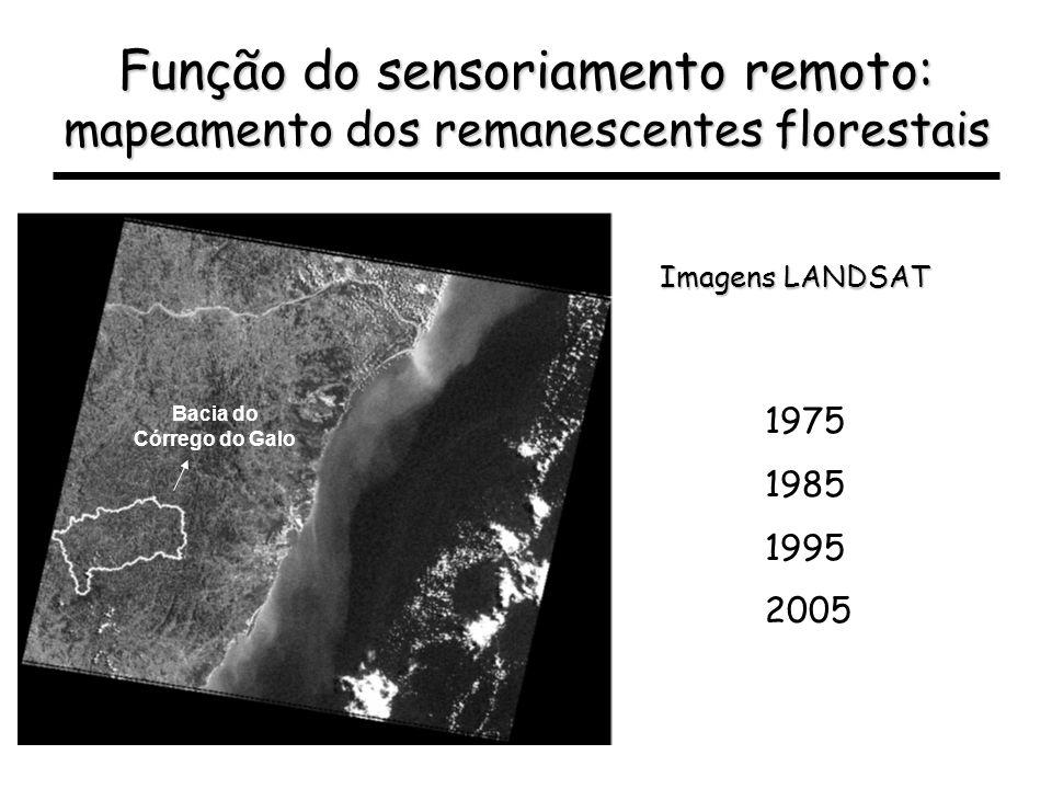 Função do sensoriamento remoto: mapeamento dos remanescentes florestais