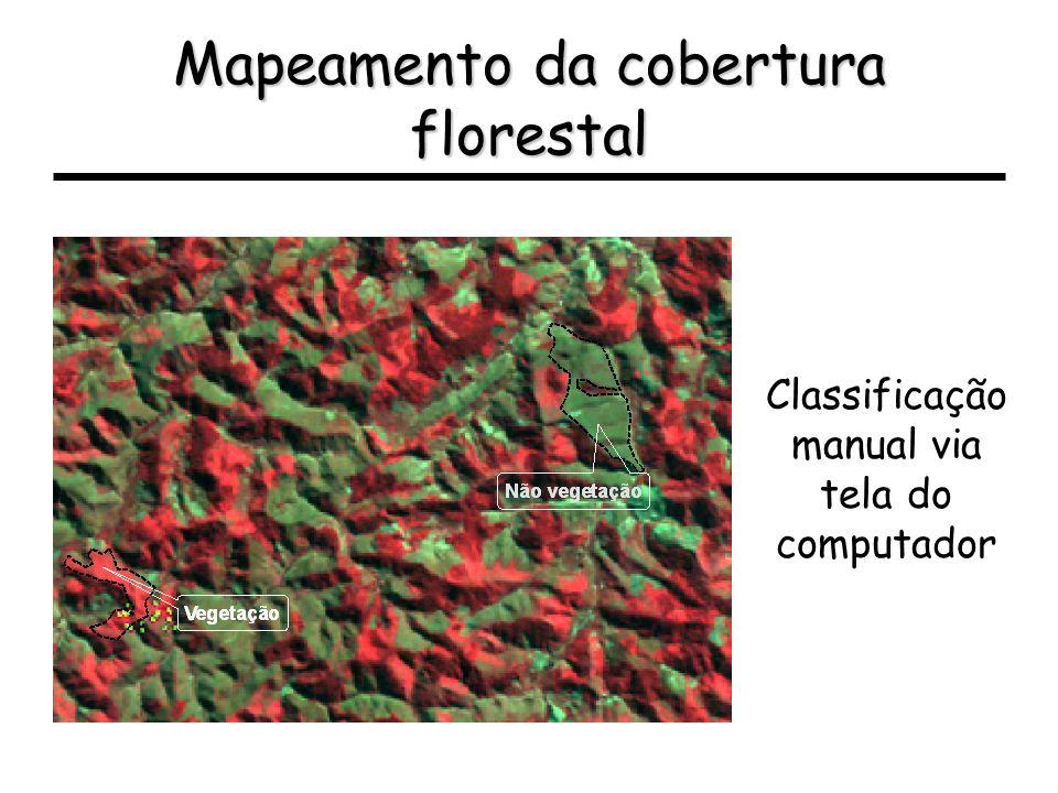 Mapeamento da cobertura florestal