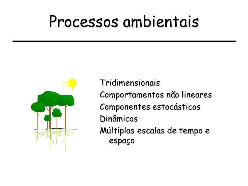 Processos ambientais Tridimensionais Comportamentos não lineares