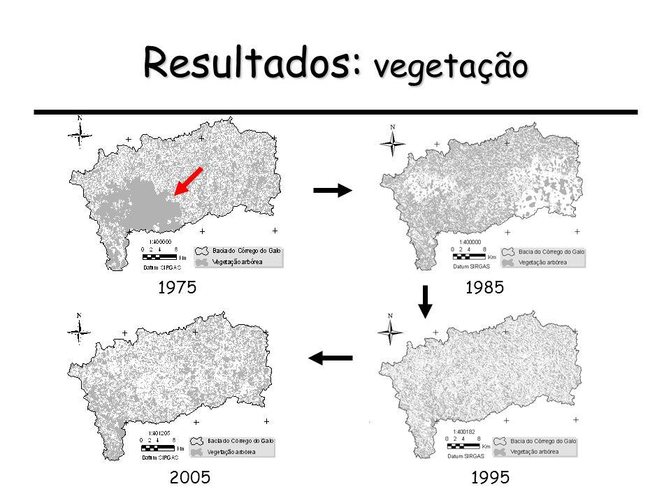 Resultados: vegetação