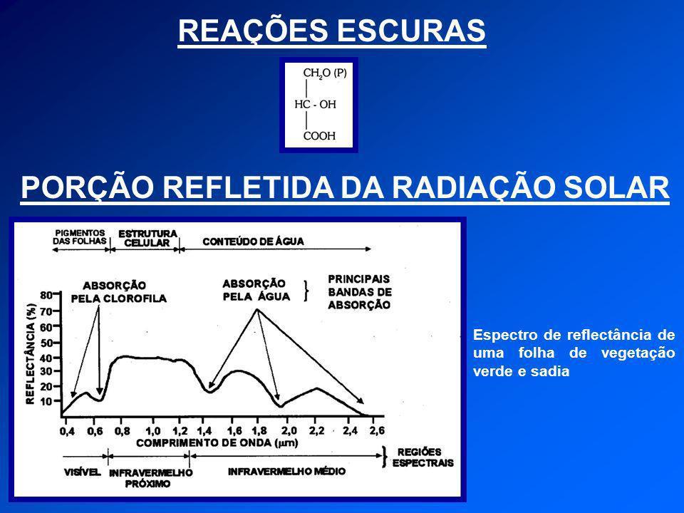 PORÇÃO REFLETIDA DA RADIAÇÃO SOLAR