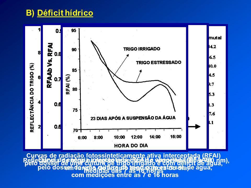 B) Déficit hídrico