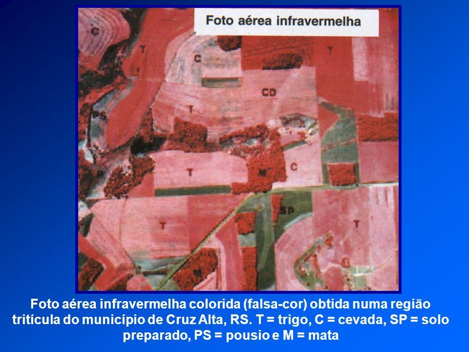 Foto aérea infravermelha colorida (falsa-cor) obtida numa região tritícula do município de Cruz Alta, RS.