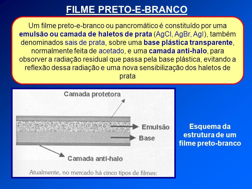 Esquema da estrutura de um filme preto-branco