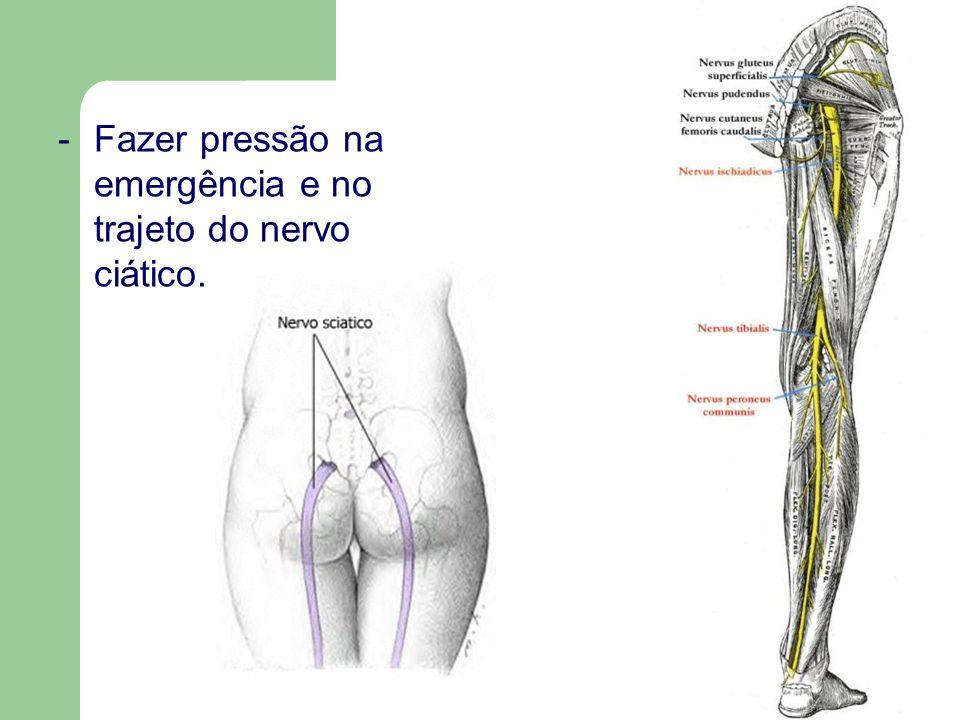 Fazer pressão na emergência e no trajeto do nervo ciático.