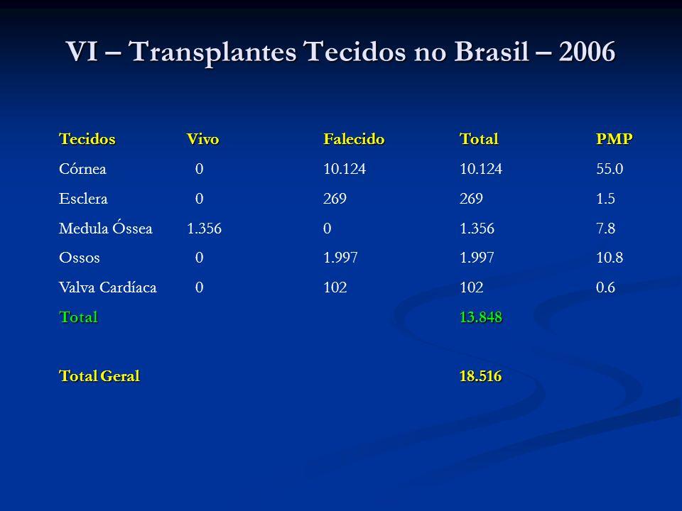 VI – Transplantes Tecidos no Brasil – 2006