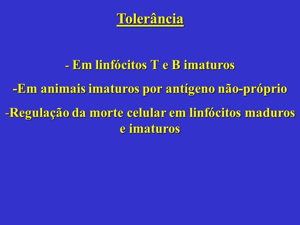 Tolerância -Em animais imaturos por antígeno não-próprio