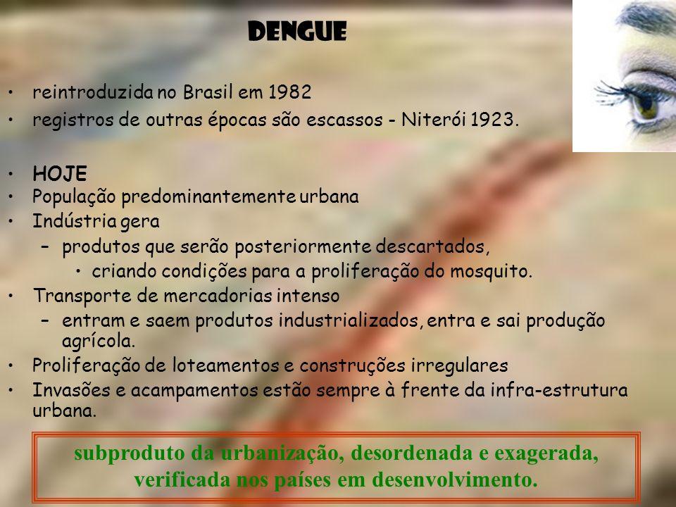 DENGUE reintroduzida no Brasil em 1982. registros de outras épocas são escassos - Niterói 1923. HOJE.