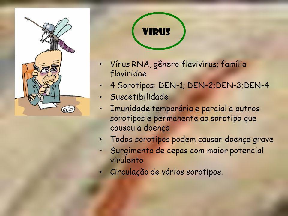 VIRUS Vírus RNA, gênero flavivírus; família flaviridae