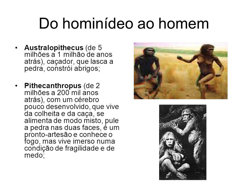 Do hominídeo ao homem Australopithecus (de 5 milhões a 1 milhão de anos atrás), caçador, que lasca a pedra, constrói abrigos;