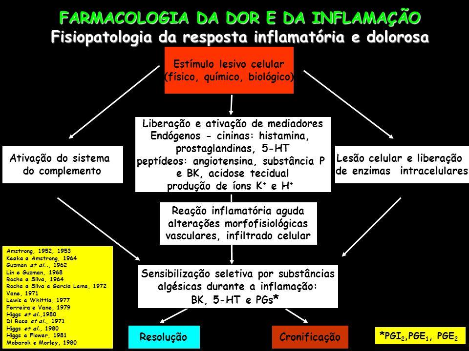 FARMACOLOGIA DA DOR E DA INFLAMAÇÃO